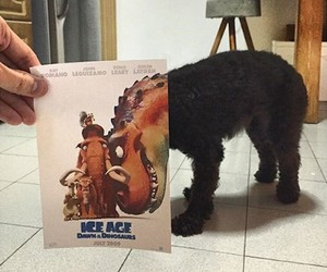 Famous Movie Posters Hijacked by Dogs
