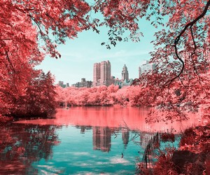 """Infrared NYC"" by Photographer Paolo Pettigiani"