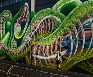 New Mural by Street Artist Nychos in Linz