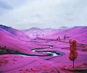 The Enclave by Richard Mosse at Venice Biennale