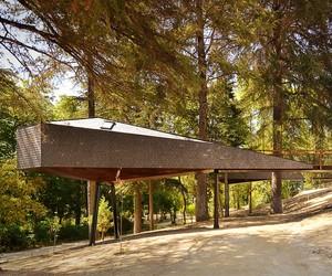 Tree Snake Houses at Pedras Salgadas Park