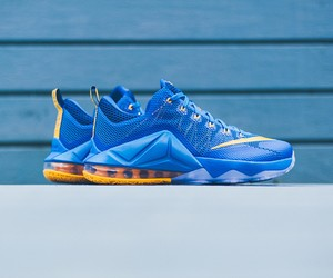 Nike Lebron 12 Low Entourage