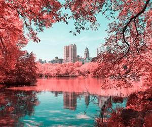 Paolo Pettigiani Infrared New York City