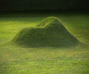 Terra 2.0 Grass Armchair by Nucleo