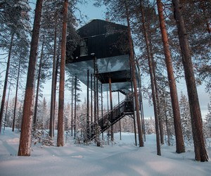 The 7th Room at Treehotel by Snøhetta, Sweden