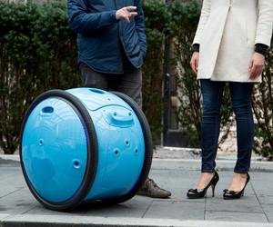 Piaggio Unveils GITA, A Robot To Carry Your Stuff