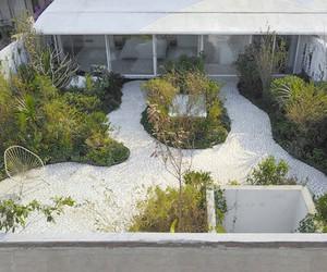 Zeller & Moye Adds Roof Garden To Mexican House