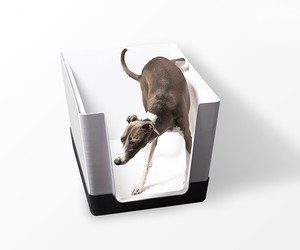 Doggy Bathroom: Anytime, On Their Own
