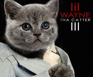 12 Classic Hip-Hop Album Covers All-Cat Remixed