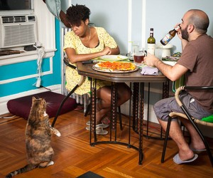 """Dinner in NY"" – A Photo Project by Miho Aikawa"