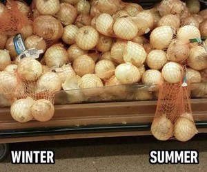 Winter vs. Summer