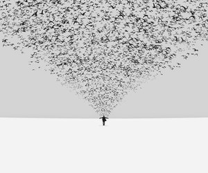 Hossein Zare Photography