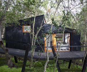 Casa Quebrada Treehouse Cabin