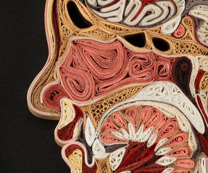 Anatomical Cross-Sections made with furled Paper