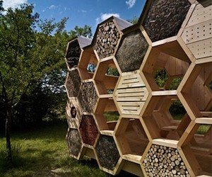 A House Made For The Bees by atelierd