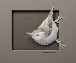 CALVIN NICHOLLS: beautiful animal worlds of Paper