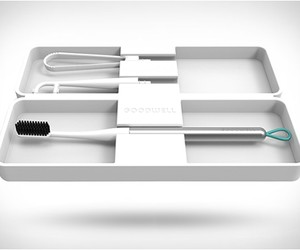 Goodwell Toothbrush