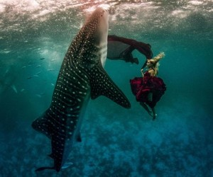 Photography: Girls and whale sharks