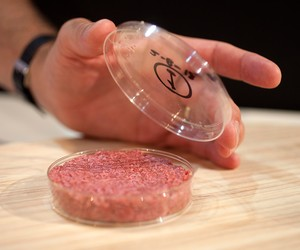 Lab-Grown Meat Just Got A Lot Cheaper