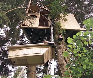DIY: how to build a big treehouse