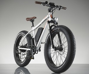 RadRover Electric Bike