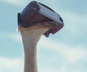 Samsung Official TVC: Ostrich