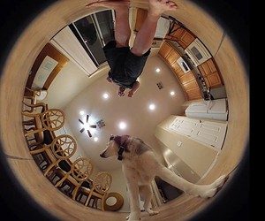 The 360LiveCam from Tamaggo